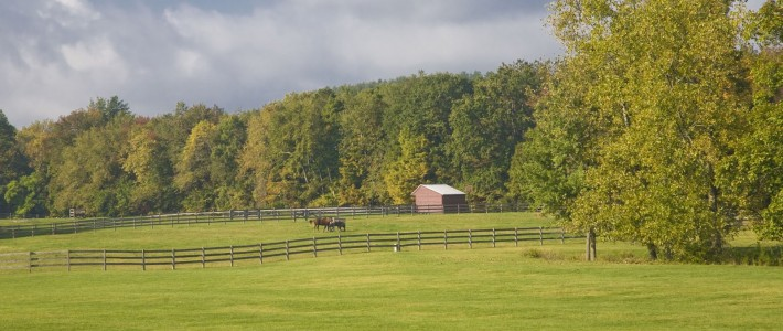 Heather Croner Real Estate Sotheby's International Realty Announces  Significant Farm Sales Totaling $13.75 Million