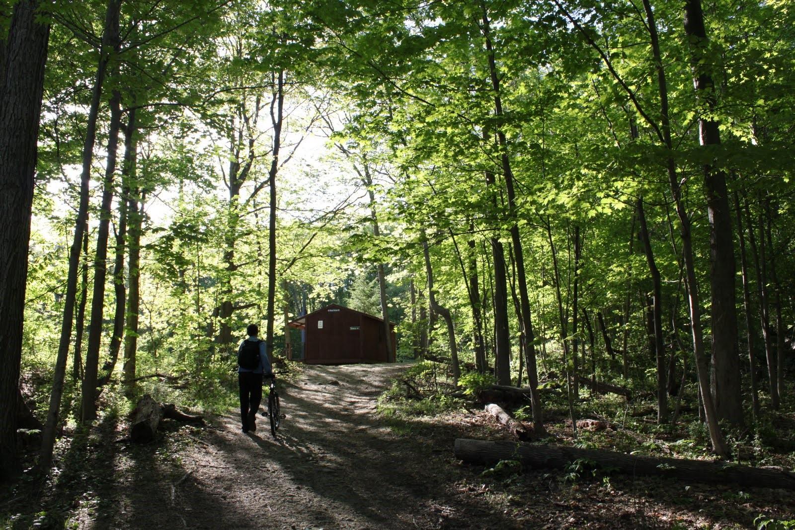 Ferncliff Forest Game Refuge and Forest Preserve