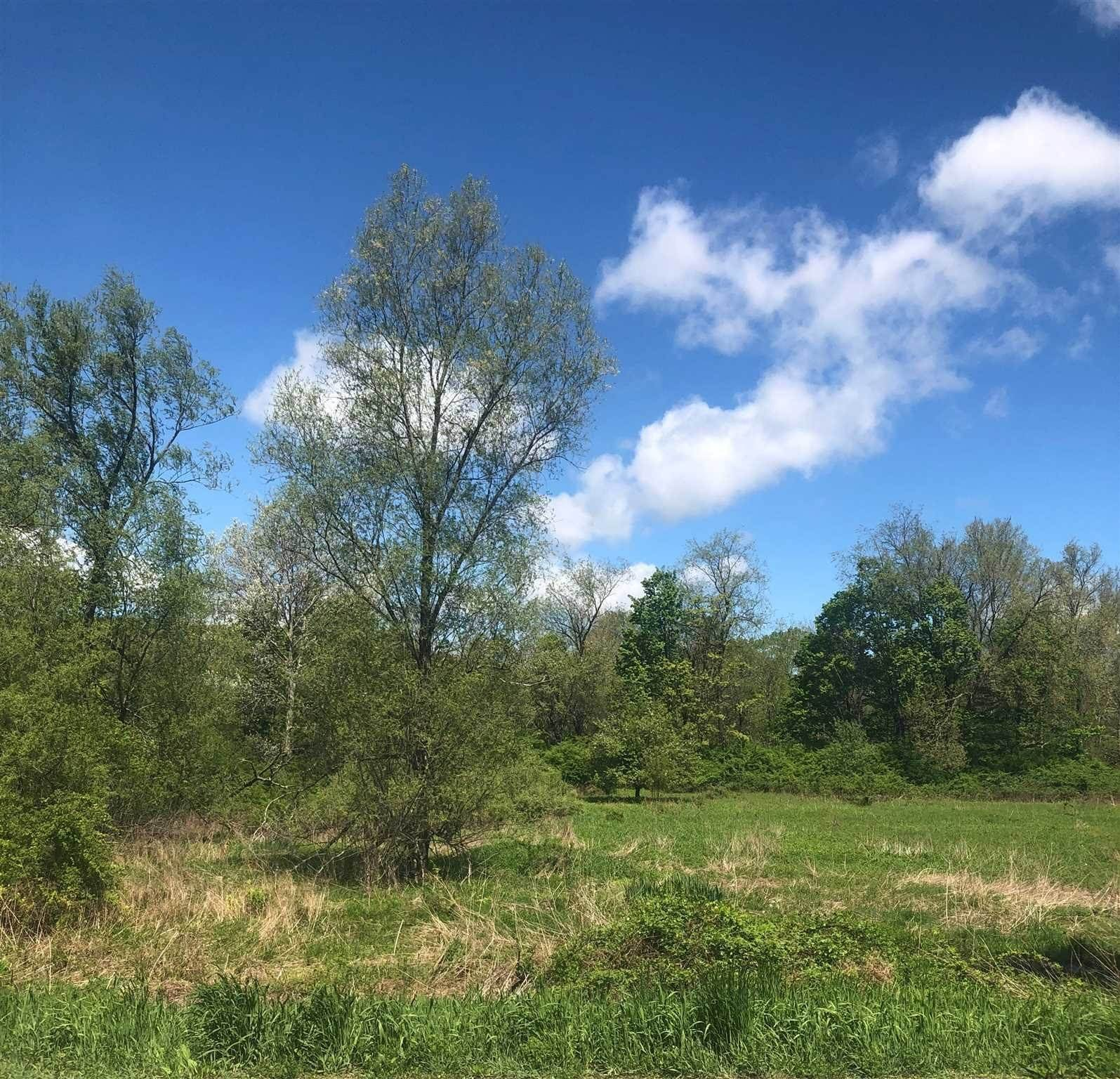 Land for Sale at 8490 STISSING Avenue Pine Plains, New York 12567 United States