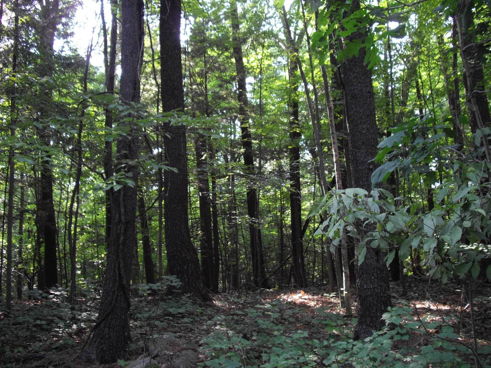 Land for Sale at 19 STOUTENBURGH DRIVE Hyde Park, New York 12538 United States