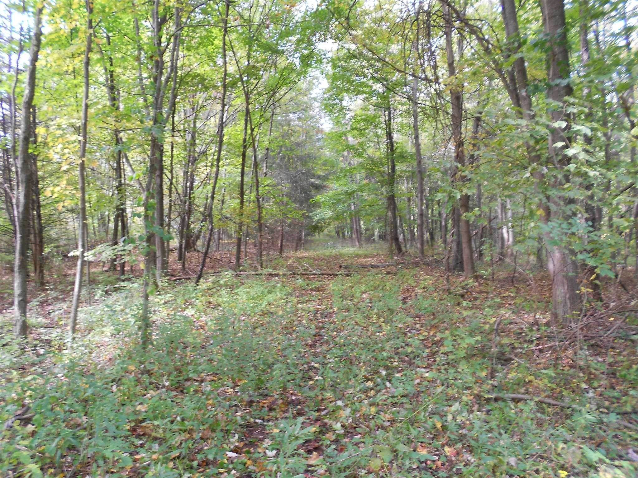 Land for Sale at 2150 ROUTE 32 Plattekill, New York 12548 United States