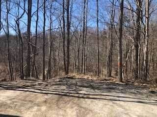 Land for Sale at 133 MAPLE AVENUE Patterson, New York 12563 United States