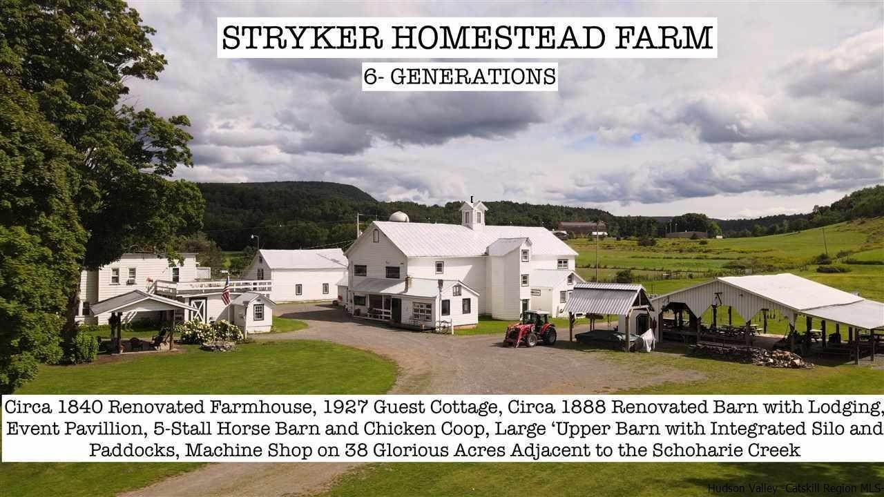 Single Family Homes para Venda às 193 Stryker Road Gilboa, Nova York 12076 Estados Unidos
