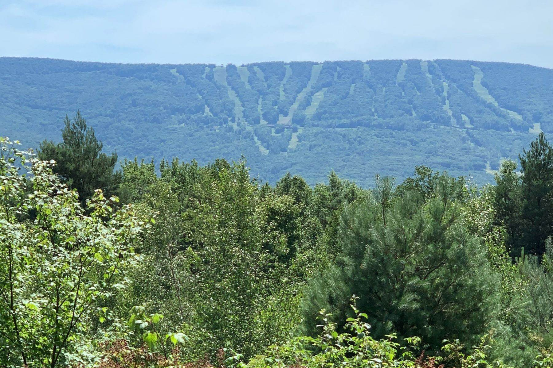 Land for Sale at Catskill Mountain Retreat 2136 Upper Birch Creek Rd Shandaken, New York 12465 United States