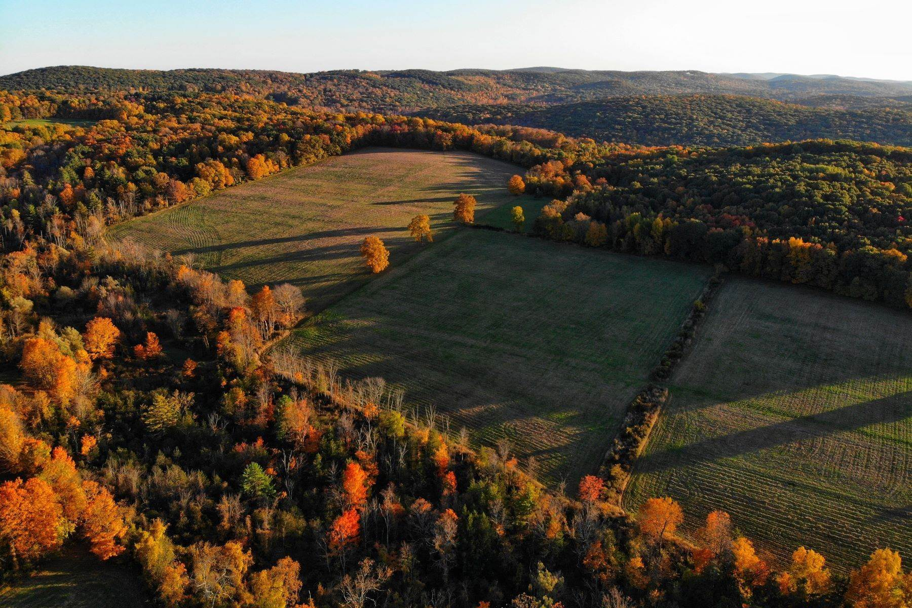 Terrain pour l Vente à Cedar Hill Farm 39 Sharon Mountain Road Sharon, Connecticut 06069 États-Unis