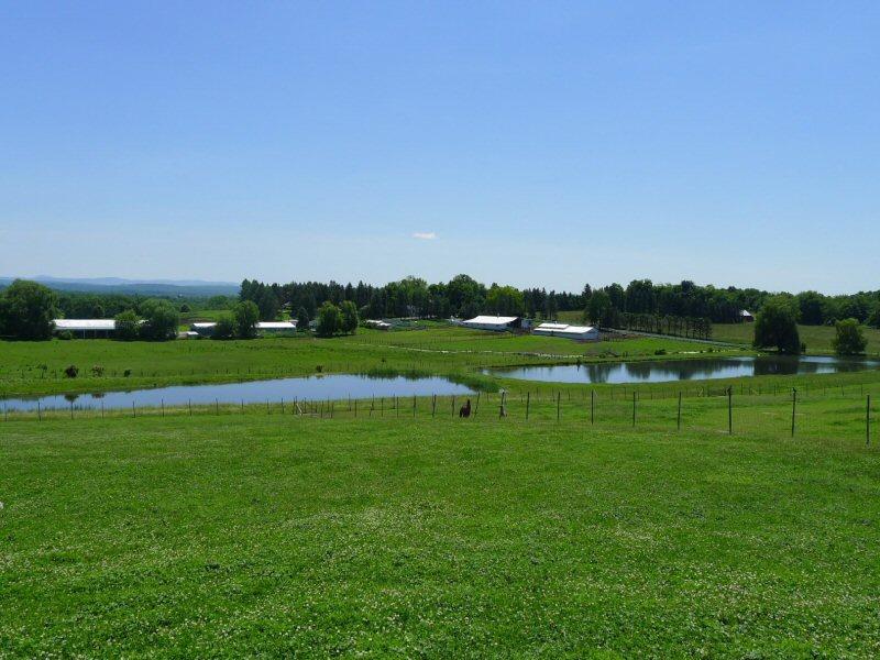 mountain-range-farm
