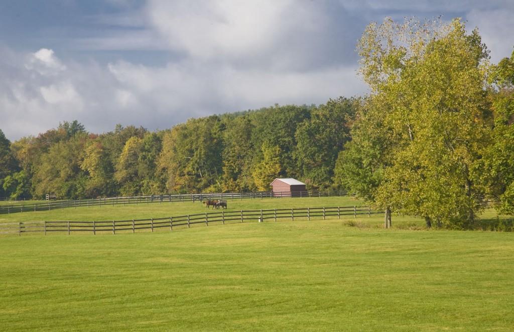 old-stone-farm
